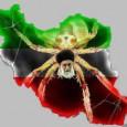 ۱۱.۰۲.۲۰۱۵ – ۲۲.۱۱.۱۳۹۳ براندازان : ۳۶ سال خیانت و جنایت حکومت اسلامی در ایران به مناسبت سالروز شوم ۲۲ بهمن برنامه رادیویی گروه براندازان (کانون کنشگرایان ایران ،Secular Demokrat Party […]