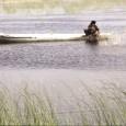 شهروندمینویسد: «زریوار پرآب شد»، «٢۴٠٠ هکتار از هورالعظیم زیر آب رفت»، «آب پس از ٣۶ سال تالاب صالحیه را زنده کرد»، «بخش زیادی از تالاب هامون بر اثر بارندگیهای اخیر […]