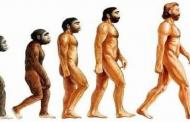 فرزندان آدم و حوا باشیم یا از نسل میمون؟! ازشهاب شباهنگ